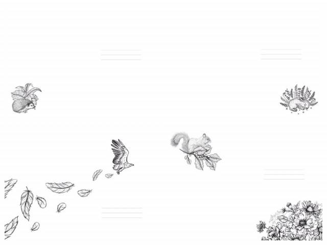 #  Блокнот  Твердий перепліт з Матовим  ламінуванням, з Високим лаком , розмір 143х210 мм, 64 аркуша, дизайн -19409-19412