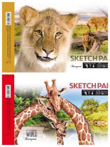 Альбом для ескізів Клеєний відривний, розмір  А4( 285х195 мм), 12 аркушів, папір 190 г / м2, чисті аркуші, дизайн - 21277-21278